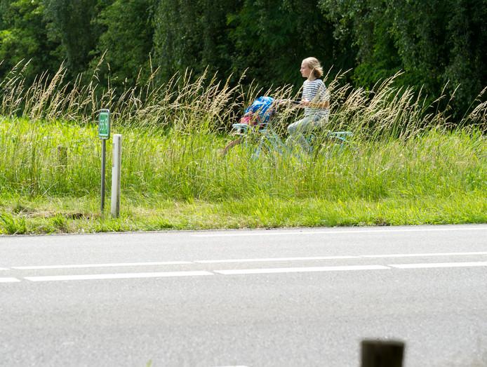 Fietsen langs de N340 tussen Zwolle en Ommen.