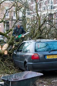 Buurman zaagt boom van Annes auto