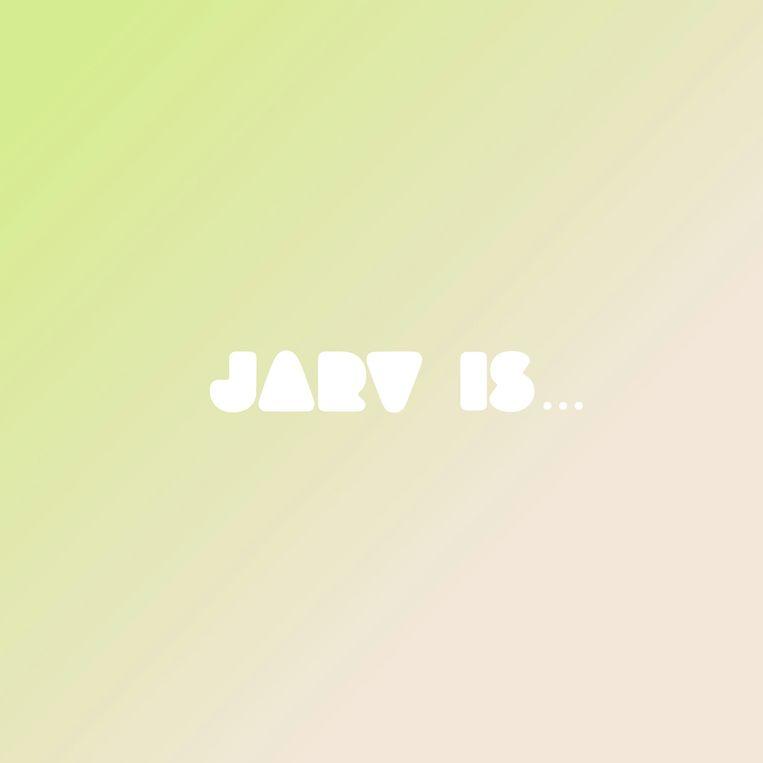 Jarvis Cocker Beeld RV