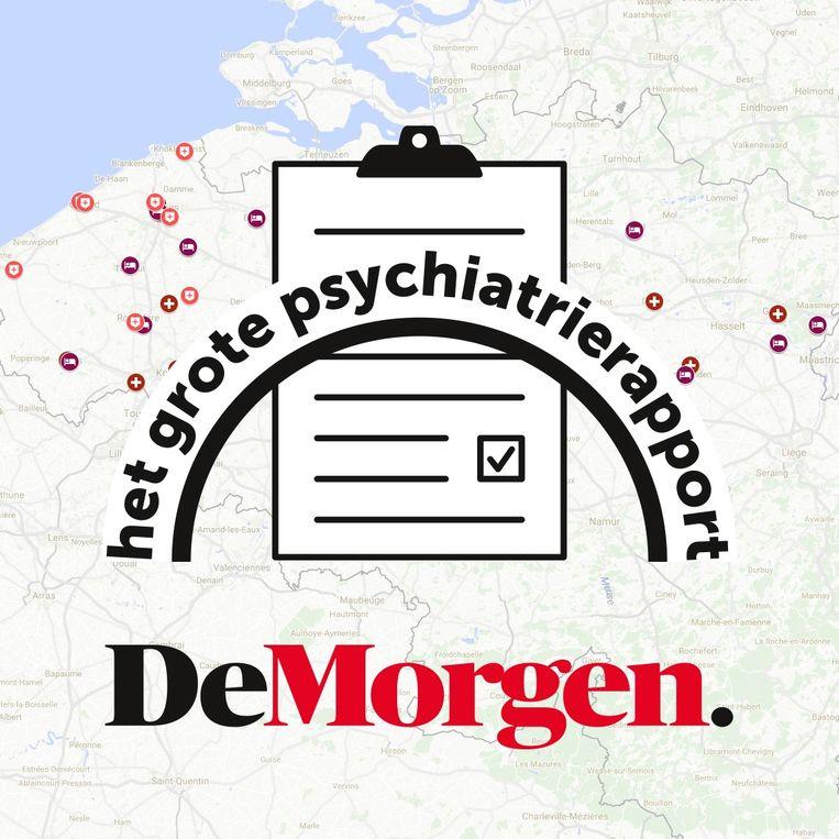 Het grote psychiatrierapport. Beeld DM