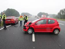 Overstekende ganzen veroorzaken ongeluk met twee auto's op A1 bij Rijssen