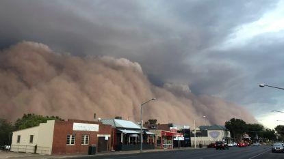 Na bosbranden, overstromingen en hagelbuien wordt Australië nu ook getroffen door stofstormen