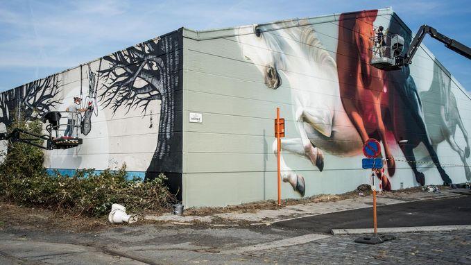 'Sorry, not Sorry' brengt kunst naar de straat