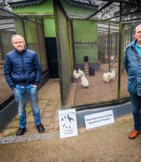 De Eendracht in Rijssen overleefde de oorlog: 'Alle duiven moesten worden afgemaakt'