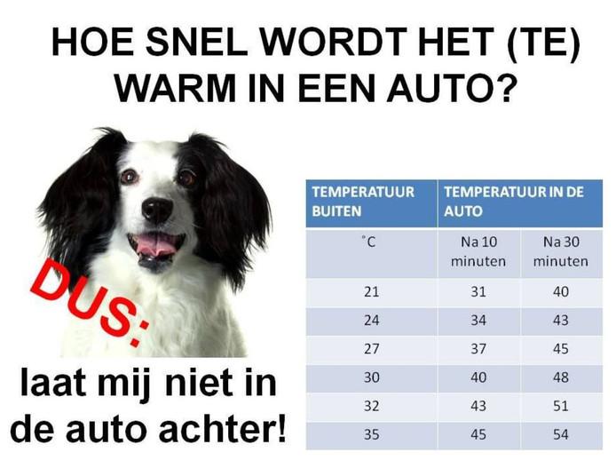 De temperaturen stijgen snel als een auto in de zon staat.