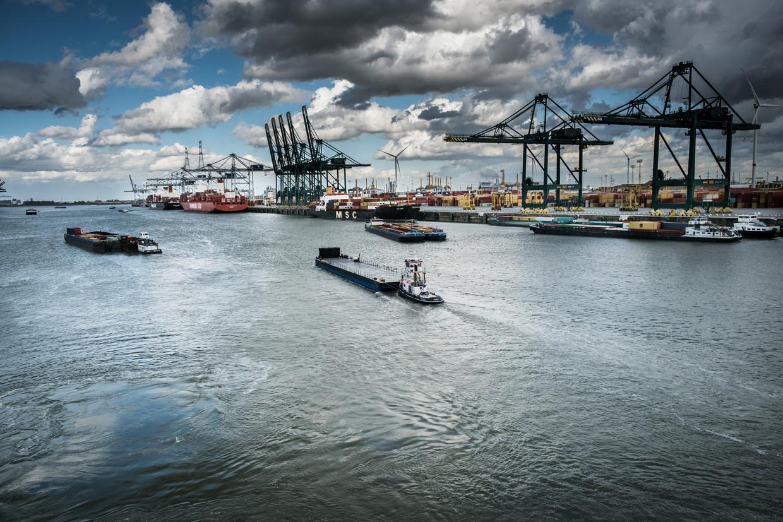 De haven van Antwerpen. 'België heeft twee belangrijke clusters, Brussel en de Vlaamse havens.' Beeld  Bart Leye
