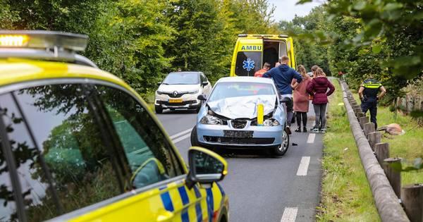 Hert afgeschoten na botsing in Laag-Soeren; automobilist gewond naar ziekenhuis.