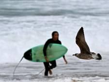 Spaanse surfer geboeid van strand gehaald na positieve coronatest
