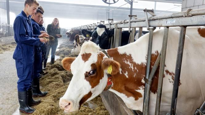 Heeft de boer nog toekomst? 'Natuurlijk!', zeggen jonge boeren in opleiding