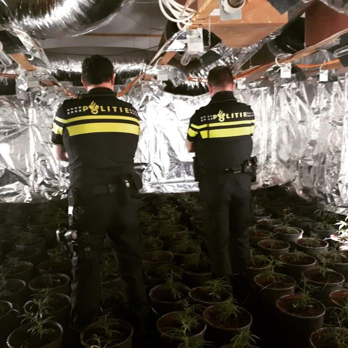De politie trof eind maart 210 wietplanten aan in de woning.