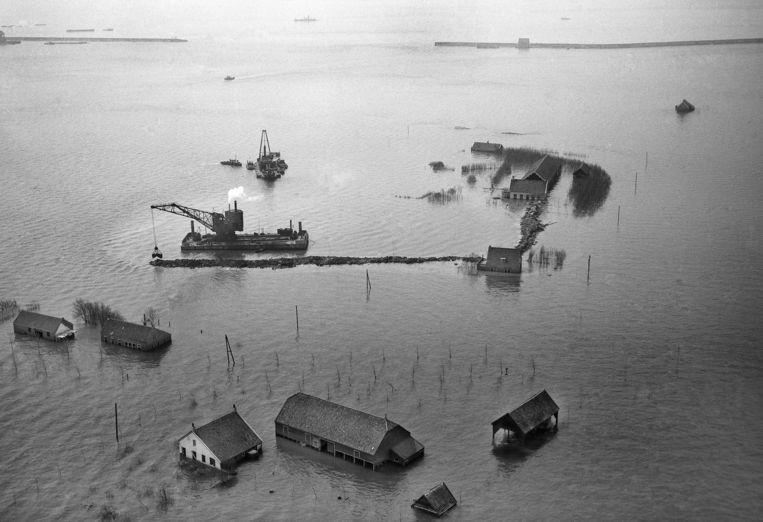 Schouwen Duiveland na de watersnoodramp in 1953. Beeld ANP