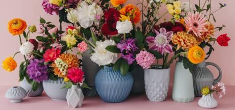 Hippe trend van keramiek in huis: 'Alles kan en mag qua styling'