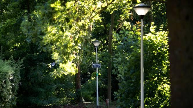 Test minder lantaarnpalen herhaald in delen van Deurne