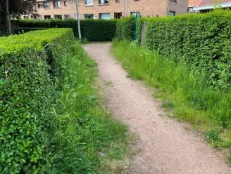 """""""Het lijkt wel of de stad onze buurt gewoon vergeten is"""": bewoners klagen verloedering speelplein en voetpaden aan"""