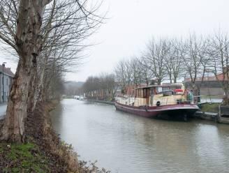 """Groen reageert verbolgen op vergunning voor kappen van bomen in jachthaven Oudenaarde: """"Slag in gezicht van die honderden mensen die protesteerden"""""""