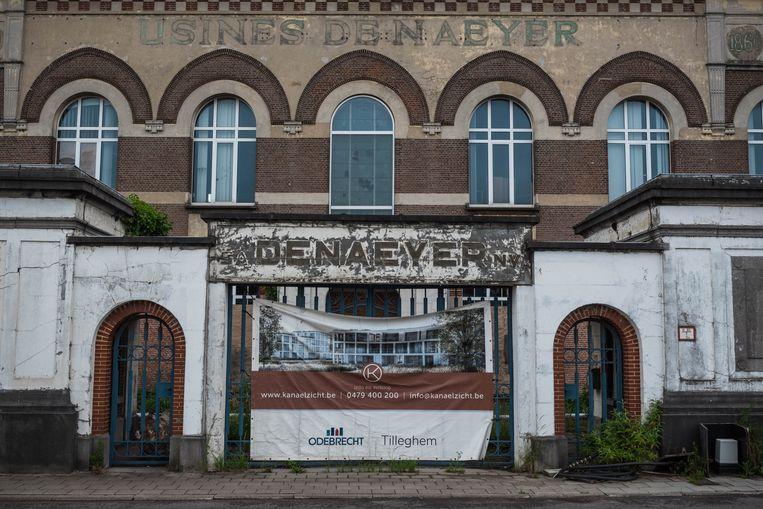 Ook in Willebroek zijn er verhoogde PFOS-waarden gemeten rond een oude papierfabriek. Beeld Wouter Maeckelberghe