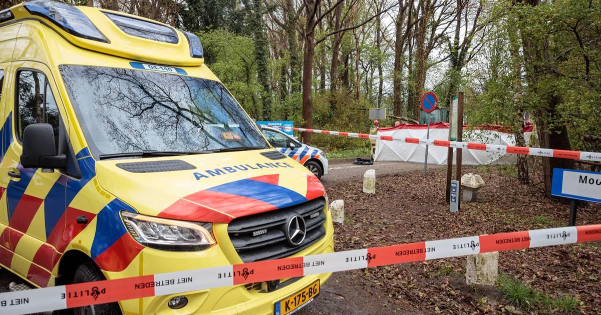 Campinggasten Oudleusen geschrokken na dodelijk ongeval: 'Ik heb wel even gekeken naar de boom achter de camper van mijn nicht