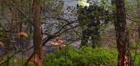 Brand in hart van natuurgebied De Geelders snel onder controle
