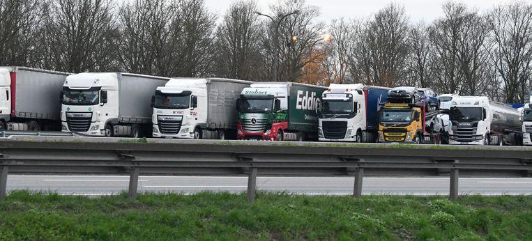 Buitenlandse vrachtwagens op de parking van Groot-Bijgaarden. Beeld Photonews