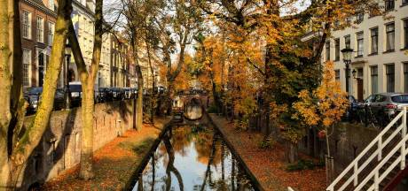 Vallende blaadjes en goudgele bomen: met deze drie tips maak je de mooiste (Utrechtse) herfstfoto's