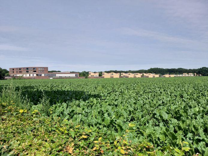 Het plangebied De Bakertand met op de achtergrond de huizen van Boschkens.