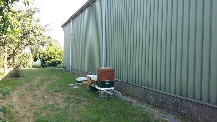 De bijenkasten van Wim Bil aan de Taaijersweg. Ook in Ouwerkerk heeft de Zierikzeeënaar wat bijenvolken. Intensief werk, al leerde hij van Koos Fluijt 'er niet te veel in te krauwen'. ,,Je kunt wel een beetje proberen te sturen, maar het is natuurlijk wel natuur.''