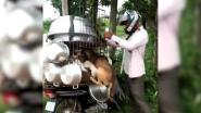 Man betaalt 350 dollar om honden te redden die als voedsel zouden dienen