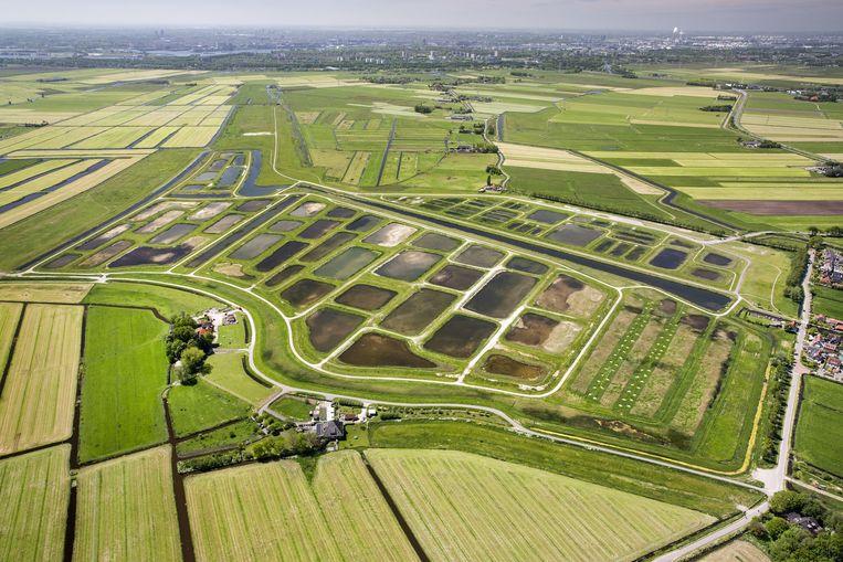 'Amsterdam zou Amsterdam niet zijn zonder Waterland, zonder de combinatie van stad en cultuur.' Beeld Frans Lemmens