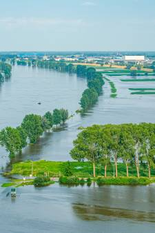 Overdiepse Polder blijft maar ternauwernood droog: 'Een mooi staaltje watermanagement'