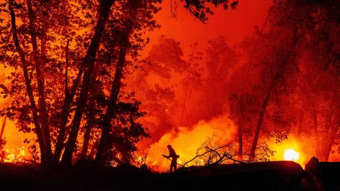 Bosbrand is qua oppervlakte grootste ooit in Californië, evacuatie voor half miljoen mensen in Oregon