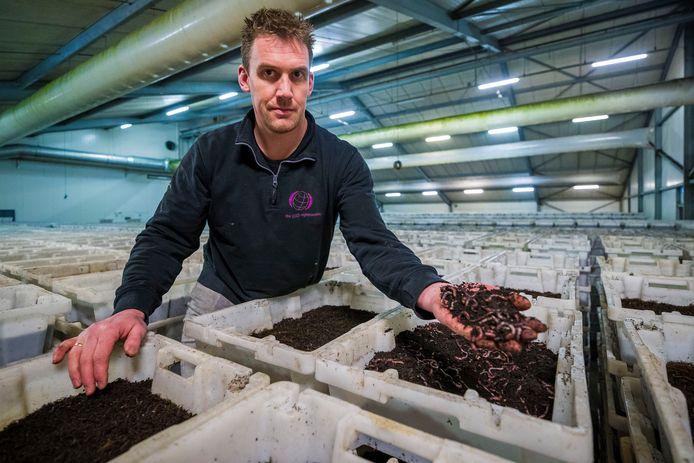 Michel van der Werff, bedrijfsleider van The Dutch Nightcrawlers, tussen de voorraad wormen. Het bedrijf beschikt over een constante voorraad van 25.000 kilo wormen.