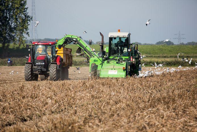 De hoeveelheid stikstof die landbouw, verkeer en industrie dagelijks uitstoot, is te hoog in Nederland.