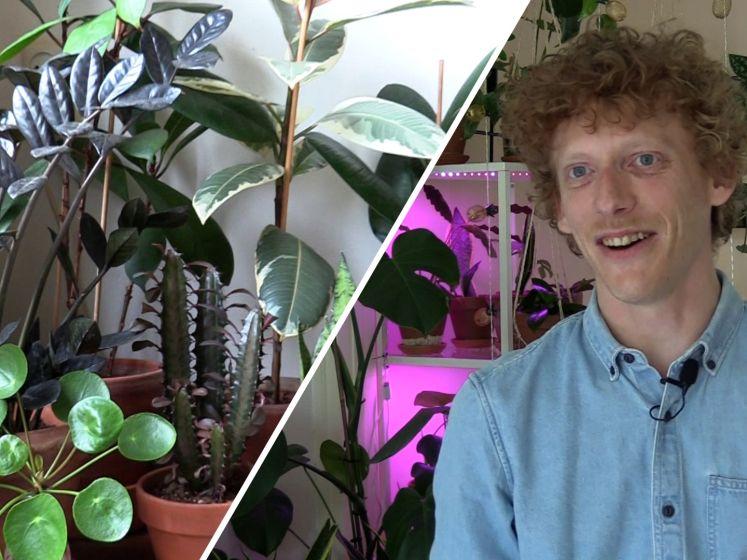 In het plantenwalhalla van Rutger staan meer dan 200 planten