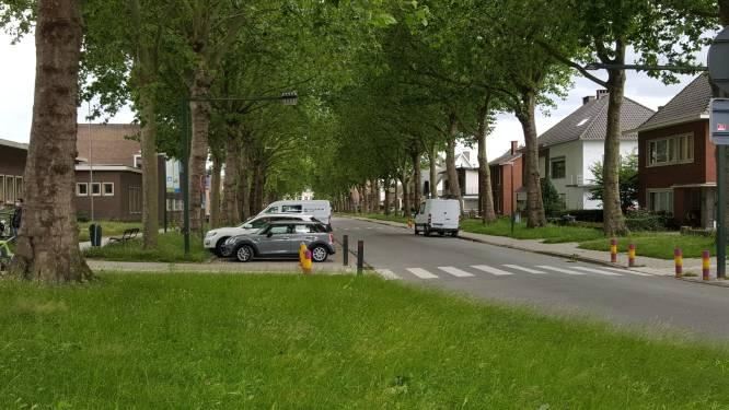 Bomen van Ridder Berthoutlaan en Heideplaats krijgen snoeibeurt