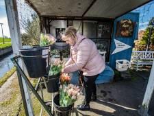 Creatief in de crisis: Tuinders zetten de bloemetjes buiten