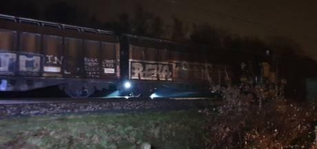 Geen treinen tussen Hengelo en Almelo door treinbrand: reizigers met bussen vervoerd