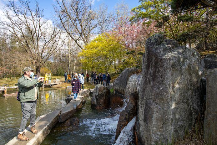 De Japanse Tuin in Hasselt doet het goed bij toeristen.