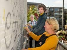 Enorme schildering op muur Schapendriesplein, maar wat wordt het? 'Afbeelding zegt iets over Oosterhout'
