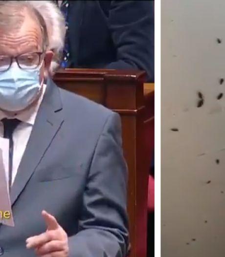 Cafards, moisissures: un député français dénonce l'état de certaines cités universitaires