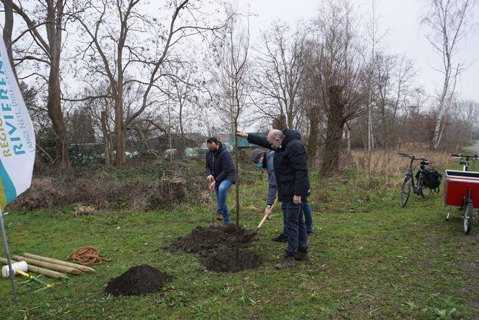 Schepen Wim Claes plant de toekomstboom aan het Blauwgroen Parkspoor Natuurlijk.