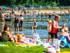 Waterratten kunnen weer los bij Haringvlietbrug Oost: negatief zwemadvies ingetrokken