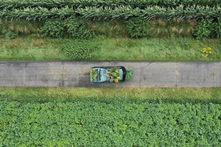 De 'Tuin Auto' rijdt over een Fries dijkweggetje. Beeld Inge Meijer