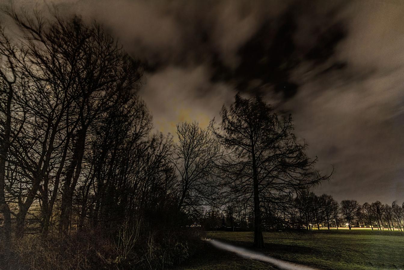 In juni 2020 werd een jonge vrouw de bosjes ingetrokken in Park De Wezenlanden in Zwolle. Omstanders konden voorkomen dat ze werd verkracht. Awel Leul M. uit Eritrea staat dinsdag voor de rechter voor deze zaak.