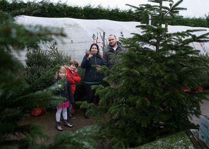 Een Kerstboom Kopen Wij Met Het Hele Gezin Achterhoek