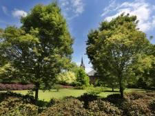 Bijzondere kloostertuin van Oosterhoutse zusters gaat even open voor publiek