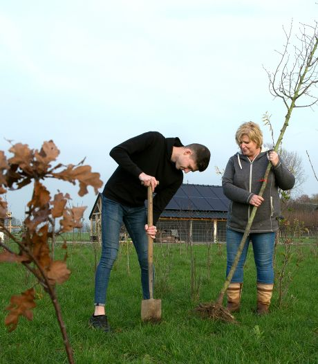 Cindy's weiland moet door 149 planten uit de streek in vijf jaar zijn veranderd in oase voor vogels en plantjes