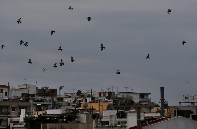 Vogels vliegen over Athene.