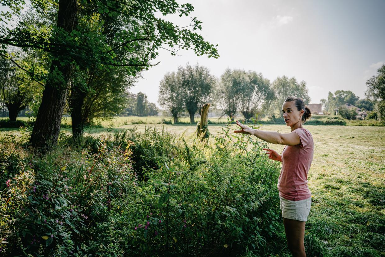 An May van het buurtactiecomité in Zedelgem. 'Onze tuin is nu al vaak drassig. Wat zal dat straks worden, met al dat beton erbij?' Beeld Wouter Van Vooren