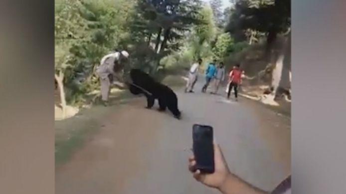 Ils marchent près d'un ours sauvage, l'animal attaque.