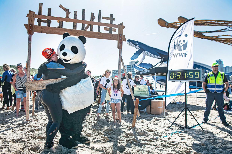 Een deelnemer aan de actie Sea Swim voor een schone zee in Scheveningen krijgt een knuffel van een panda, symbool van het Wereld Natuur Fonds. Het WNF organiseerde deze wedstrijd voor fondswerving afgelopen zaterdag en om aandacht te vragen voor de vervuiling en vernietiging van het leven in de oceanen. Beeld Foto Guus Dubbelman / de Volkskrant